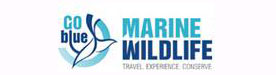 marinewildlife